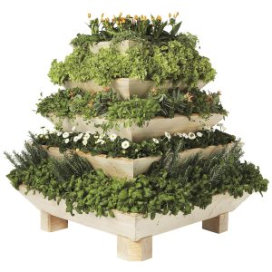 Plant Pyramid